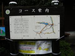 DSC02946a.jpg