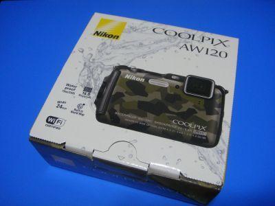 DSC03140a.jpg