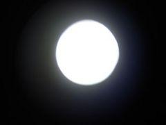 DSC05169a.jpg