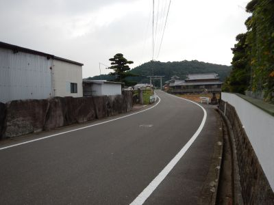 DSCN3385a.jpg