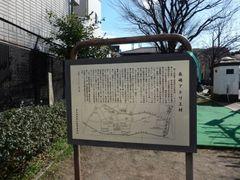 DSCN4350a.jpg
