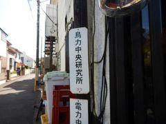 DSCN4696a.jpg