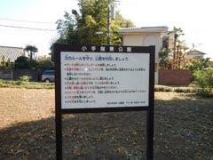 DSCN5583a.jpg