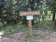 DSCN5095a.jpg